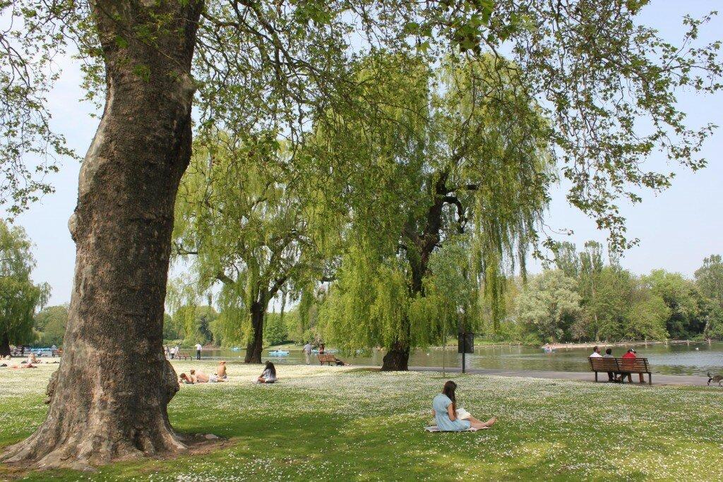 Regent's Park é de tirar o fôlego no verão. Foto: Mapa de Londres