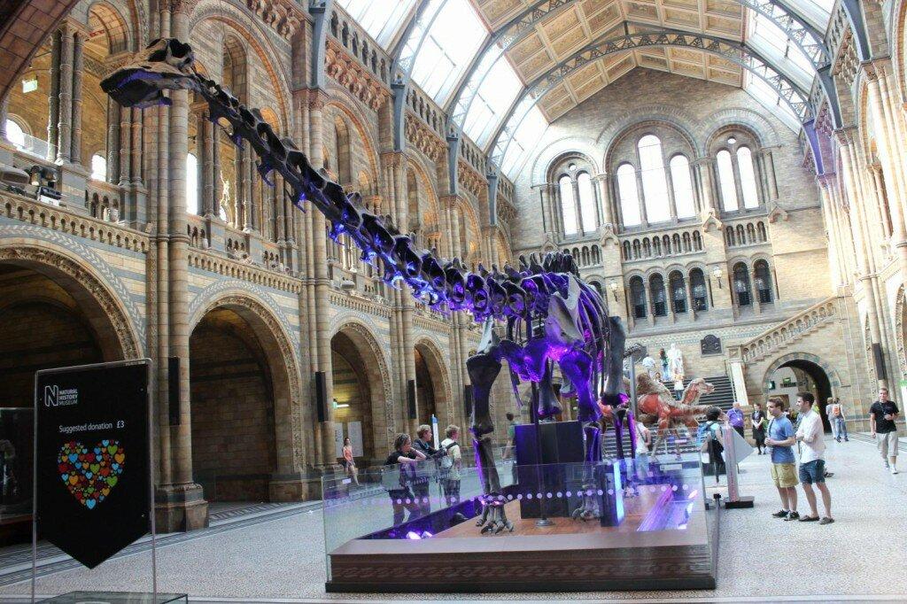 No saguão principal do Museu de História Natural. Foto: Mapa de Londres