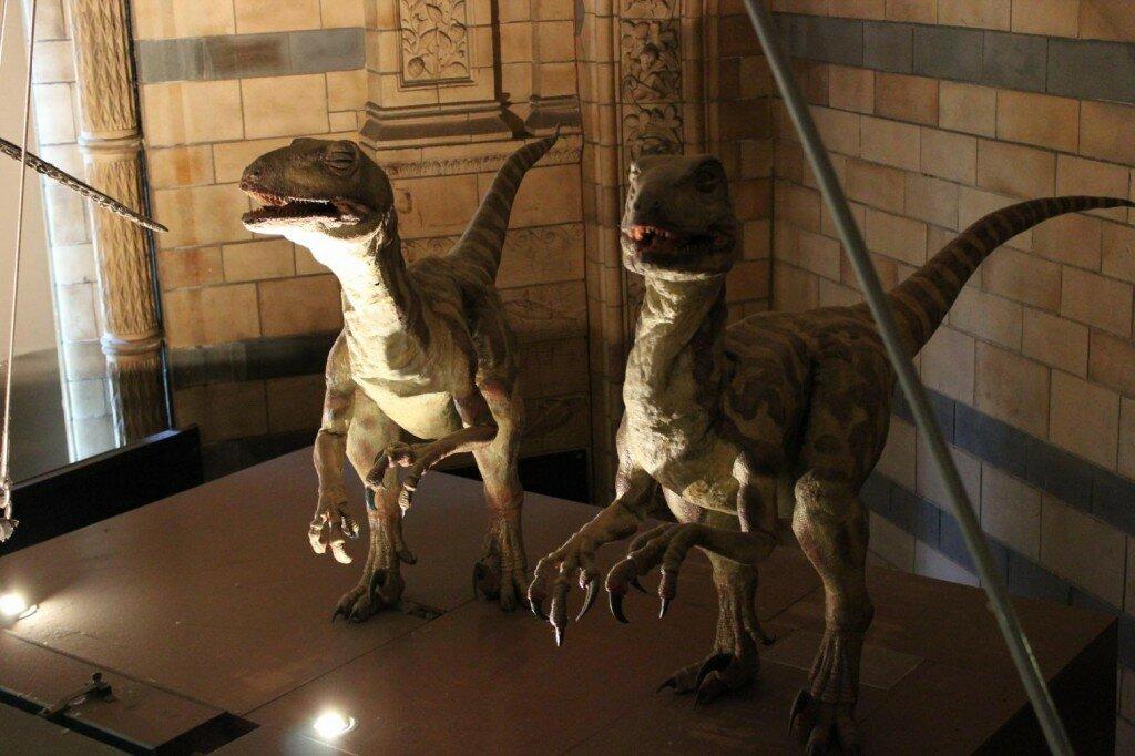 Museu de História Natural - Mapa de Londres