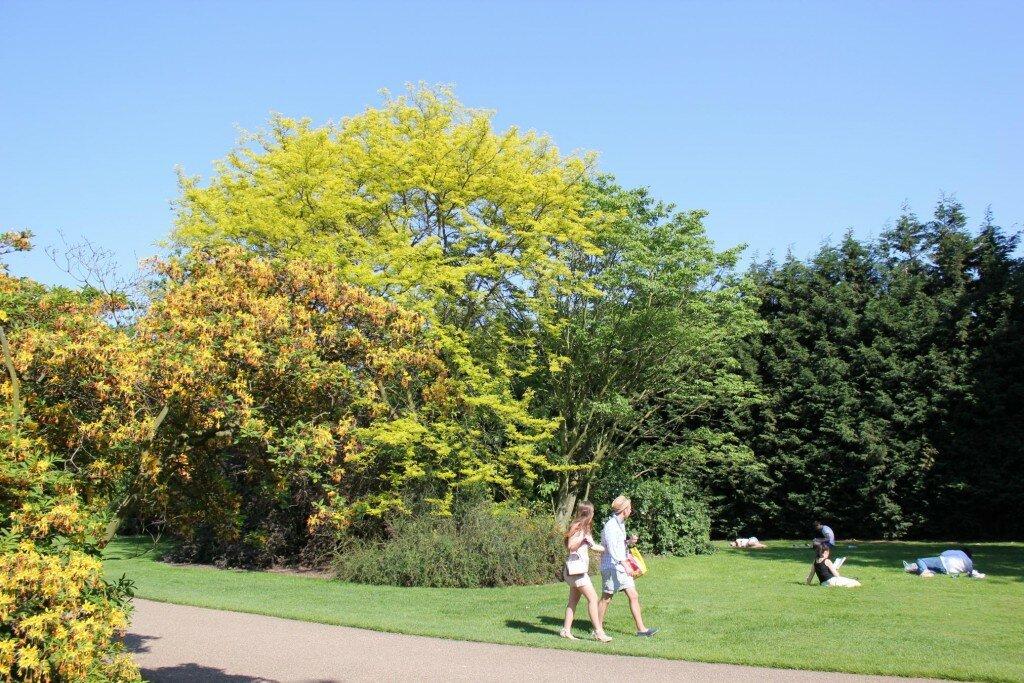 Parque de Greenwich - Mapa de Londres