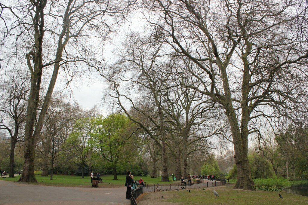 St James's Park - Primavera no Mapa de Londres