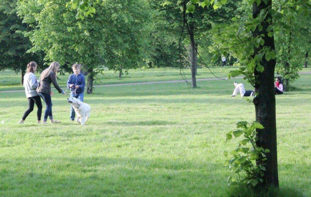 Parque Kensington Gardens - Animais de estimação - Londres