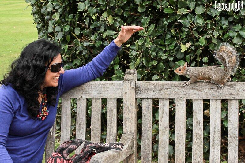 Esquilos - fotografo brasileiro Londres Europa (6)